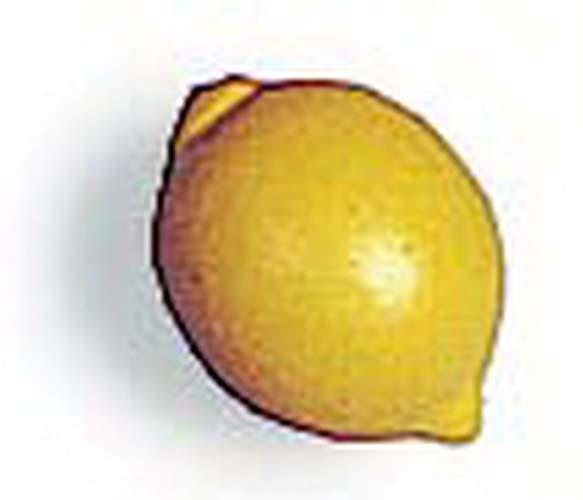 Zitronen aus Holz - 12 Stück (7050)