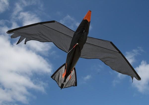 Invento-HQ Einleiner Raven 3D (140 x 75 cm)