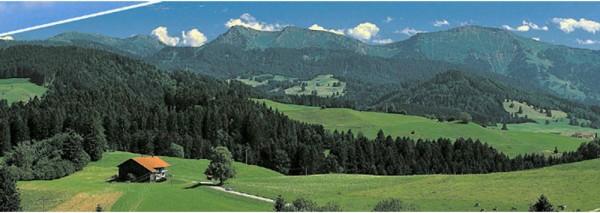 Vollmer 46109 - Hintergrund Allgäu - H0 / N (6109)