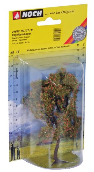 NOCH 21650 - Vogelbeere mit Beeren, 11,5 cm hoch - H0 / TT / N