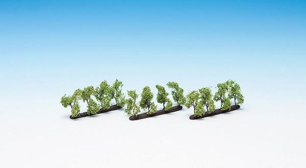 NOCH 21530 - Profi Plantagenbäume, 12 Stück, 3,5 cm hoch - H0 / TT
