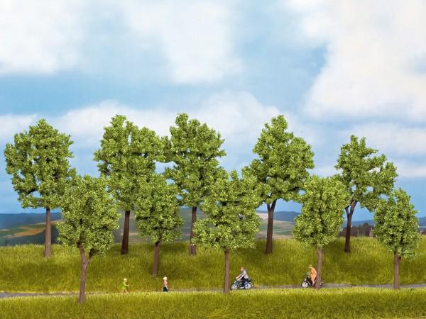 NOCH 24200 - Standard Bäume Frühling, 10 Stück, 10 - 14 cm hoch - H0 / TT